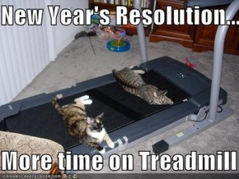 new years resolution, more time on treadmill cats